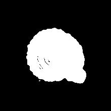Conchigliabn#13.01.mc.sp